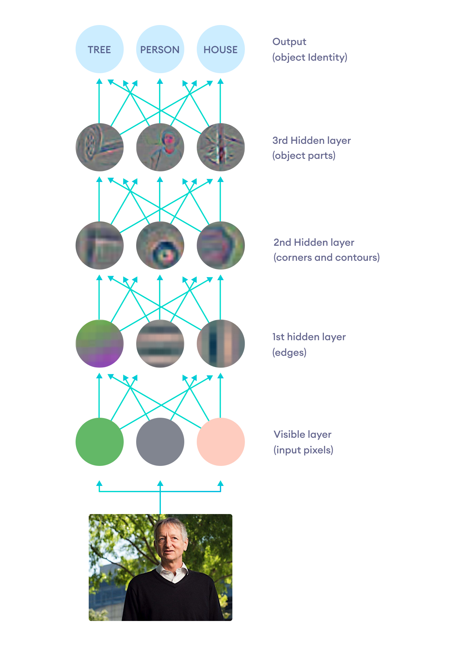 Illustration of how deep neural networks build complex representations from simpler ones