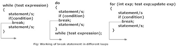 working of break statement in C programming in for, while and do...while loops