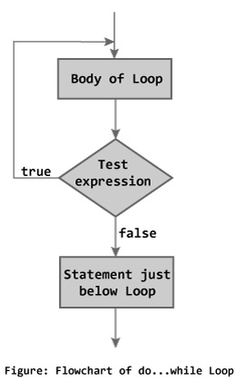 c programming while and dowhile loop